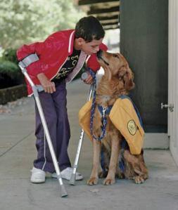 service-dog-1